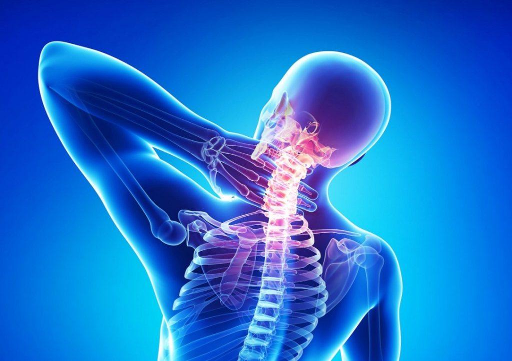 آب در نرم کردن مفاصل بین استخوان ها نقش اساسی دارد